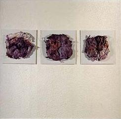 """""""Fossile Zellformen"""", handgeschöpftes Papier auf Leinwand, Anna Hafner"""