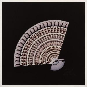 """Christa Planck """"FÄCHER"""" 50x50 cmFotografie gefächert 2002"""