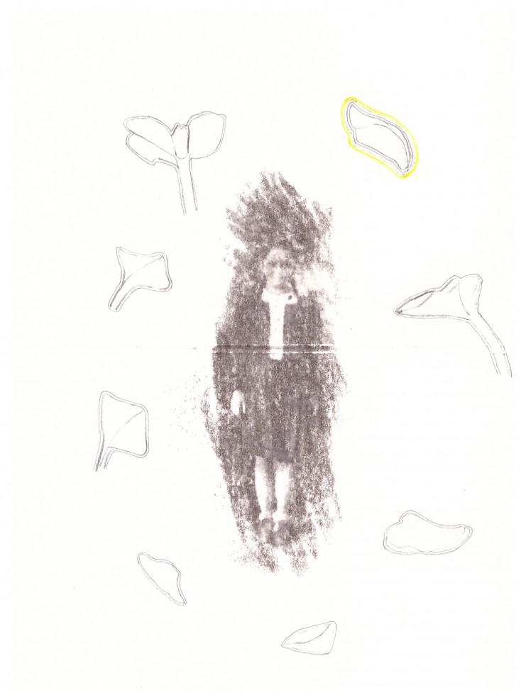 Karin Dorn-Tetzlaff, o. T. WR Gärten der Erinnerung, Frottage, Grafit, Acryl auf Papier, 20 x 15 cm, 2016